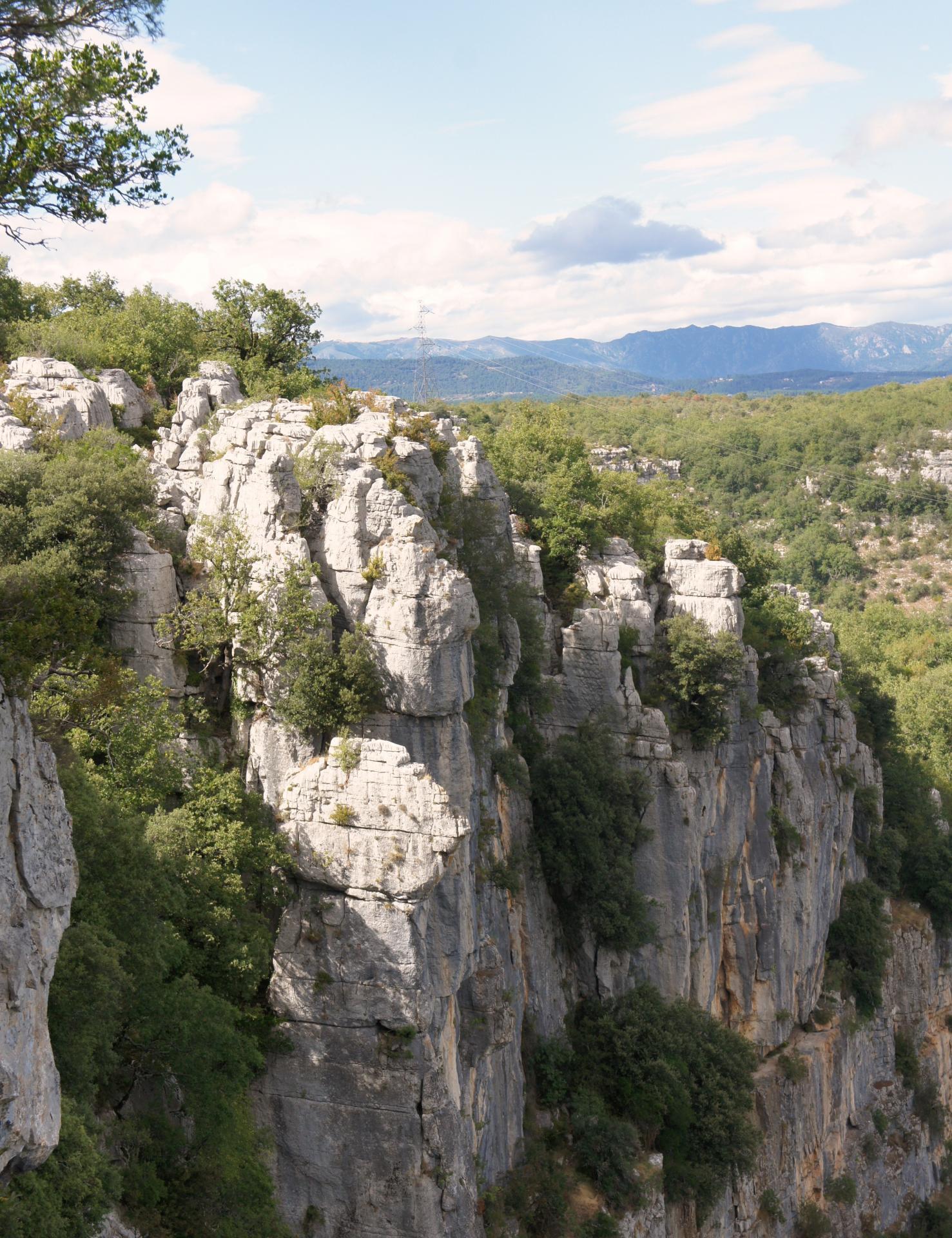 Le bois de Paîolive surplombant les gorges du Chassezac