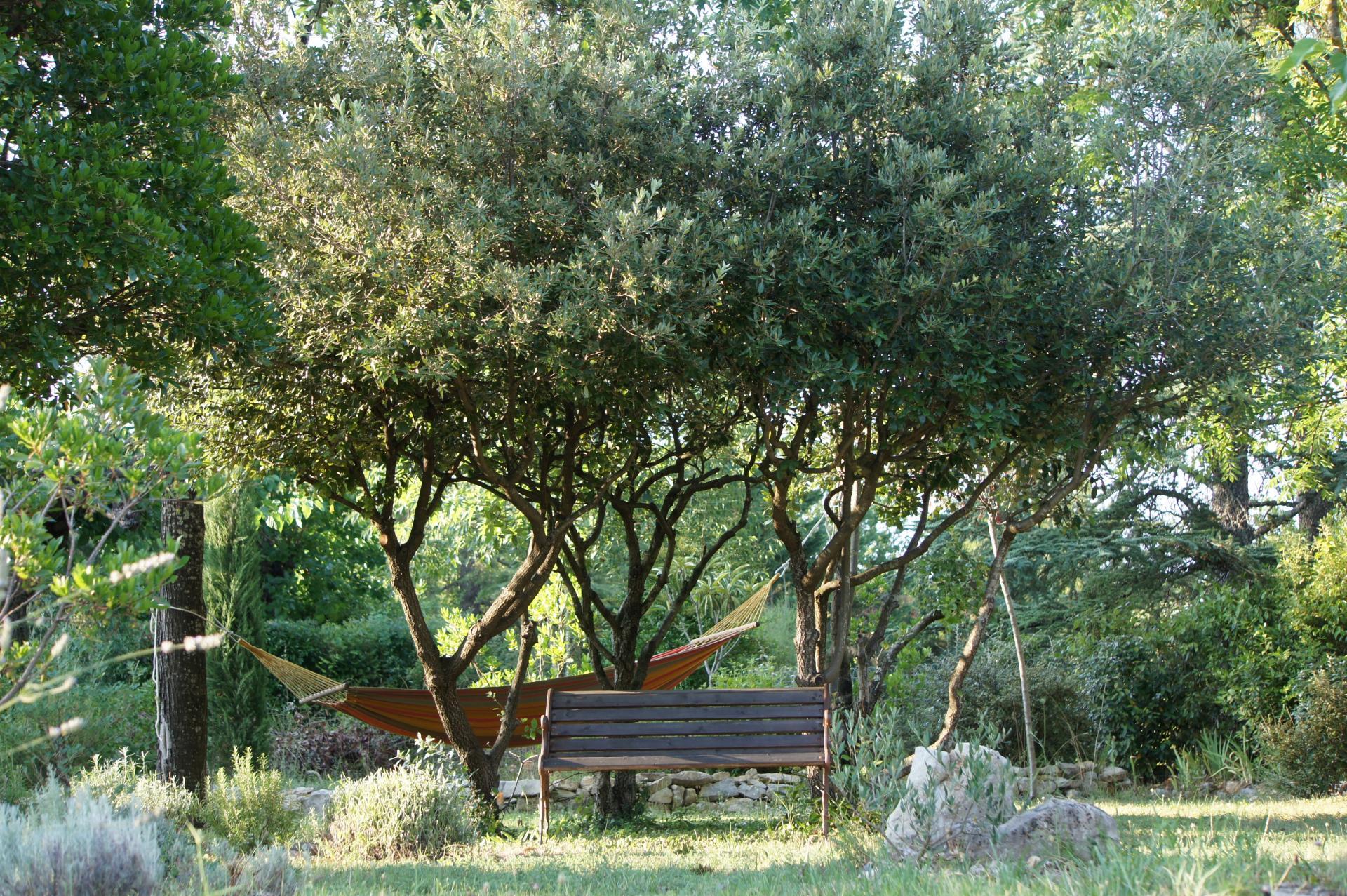A l'ombre des chênes verts